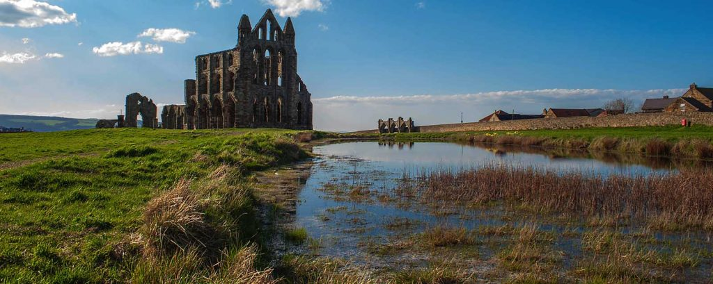 The Whitby Abbey Collections